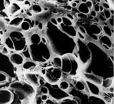 cấu trúc lỗ xốp than hoạt tính